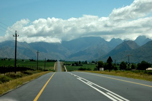 entering the winelands in the cape